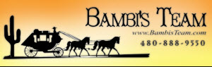 Bambi's Team with US Preferred Realty